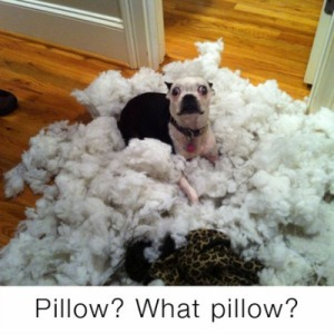 what pillow